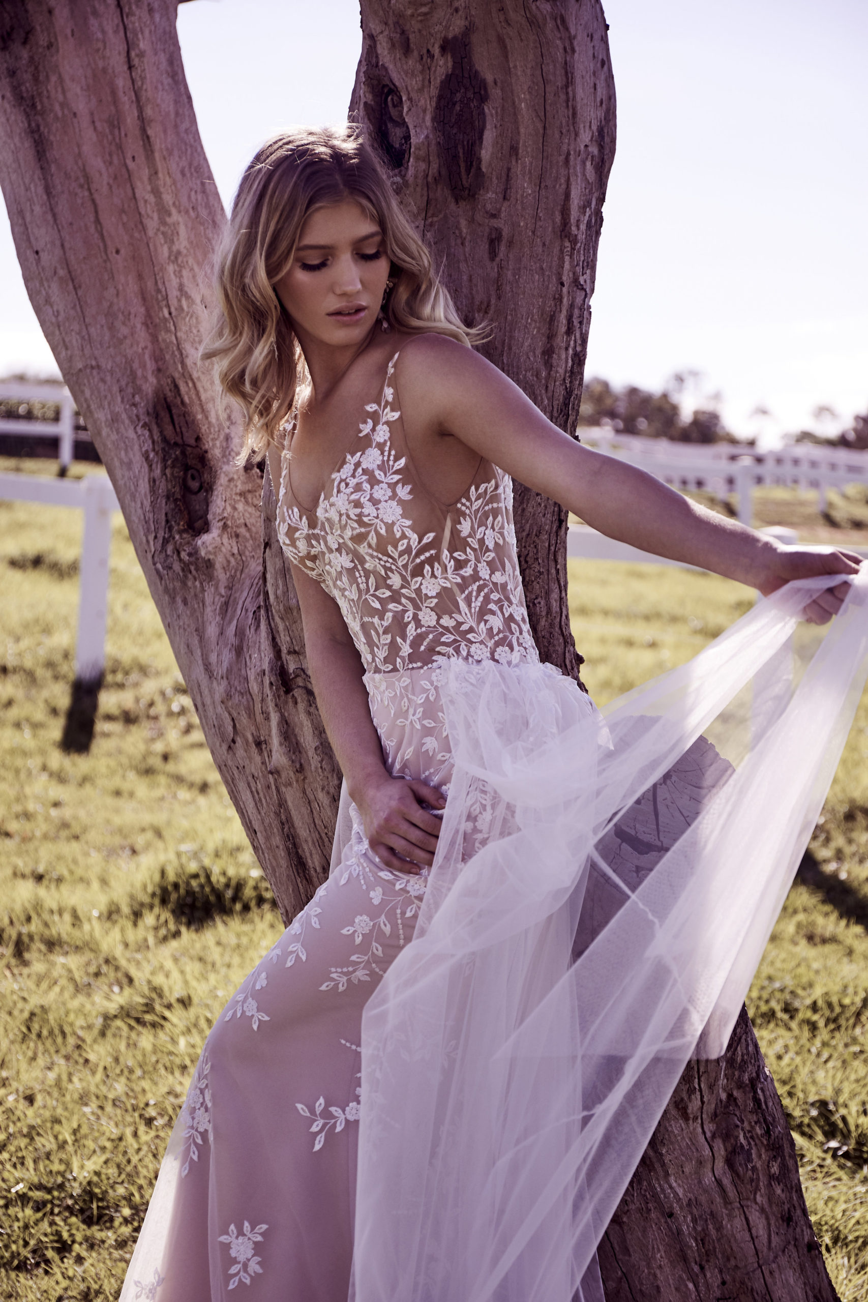 Wedding Dresses - White Embroided Wedding Dress Sitting on a Tree