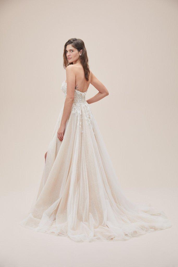 Wedding Dresses - Bride in Wedding Dress Back Pose